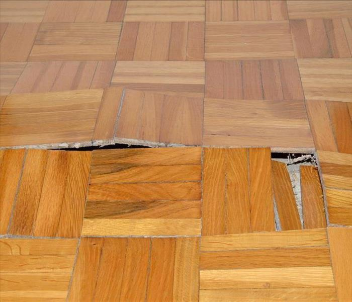 swelling wood floor