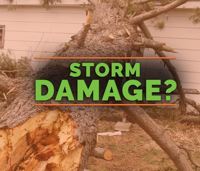 Storm Damage Storm Damage Tips: What To Do Before Help Arrives
